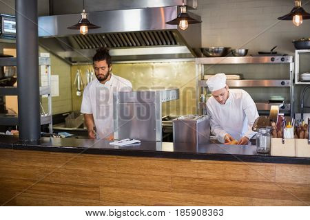 Professional chefs working in commercial kitchen