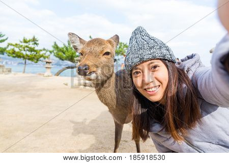 Woman takign selfie with deer in Itsukushima