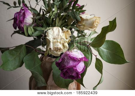 Bouquet Of Dried Roses, Closeup Low Key