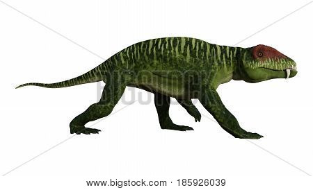 3D Rendering Dinosaur Doliosauriscus On White