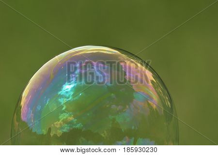 Soap bubble flying in the air on a green background