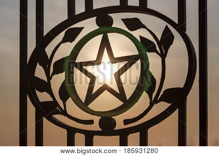 Star In Laurel Leaves And Branches