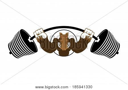 Strong Angry Boar Warthog. Wild Boar And Barbell. Emblem For Sports Team