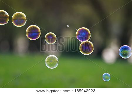 festive background with lots of bright iridescent soap bubble with reflections flying over on a bright summer meadow on a Sunny day
