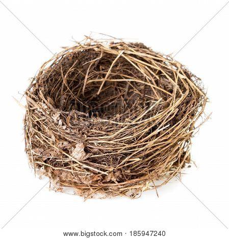 Nest isolated on white. Empty nest of a common blackbird or Turdus merula isolated on white background
