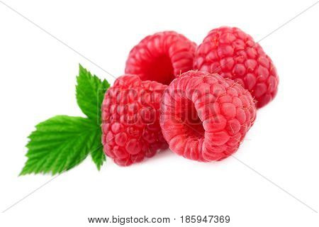 Isolated raspberries. Fresh raspberry with leaf isolated on white background