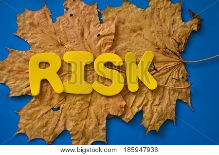 word risk on a  absttract colorful background