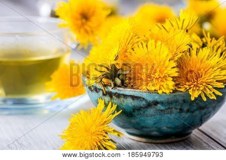 Dandelion. Yellow dandelion heads in bowl or table.
