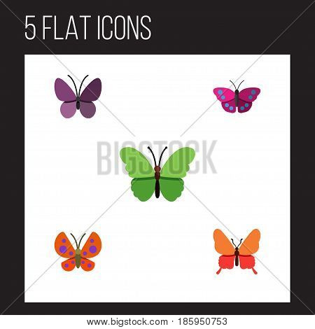Flat Butterfly Set Of Milkweed, Moth, Danaus Plexippus And Other Vector Objects. Also Includes Summer, Milkweed, Moth Elements.