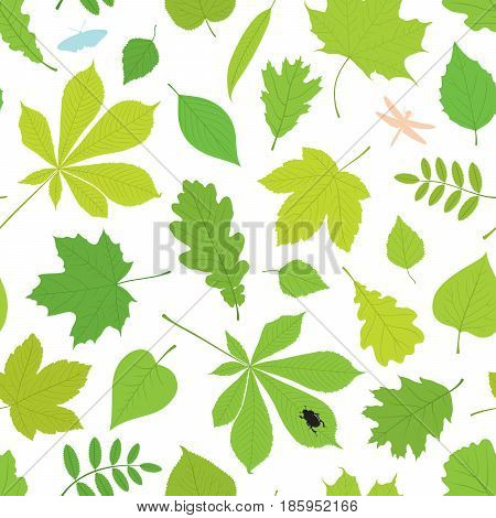 Seamless pattern of different tree leaves - oak, chestnut, birch, Rowan, linden, jasmine, lilac, maple, willow, poplar, sycamore and insects - butterfly, beetle, dragonfly.