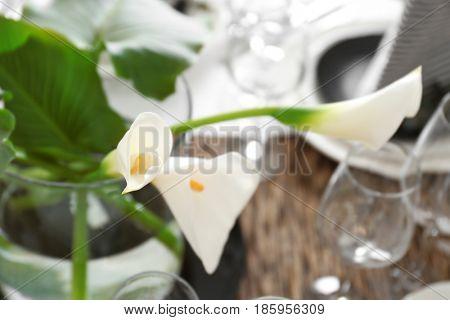 Beautiful flowers on table, closeup