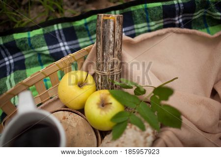 mug of tea and two apples lie on a blanket in nature