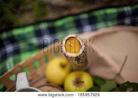 natural wax candle rests in nature on green background