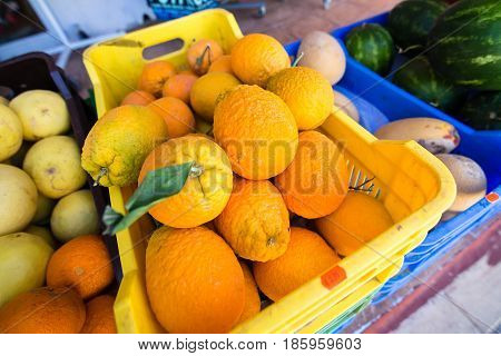 selling fresh organic oranges at farmer's market baskets. Cyprus
