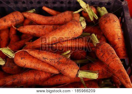 Raw Carrot Market Close Up Background Photo
