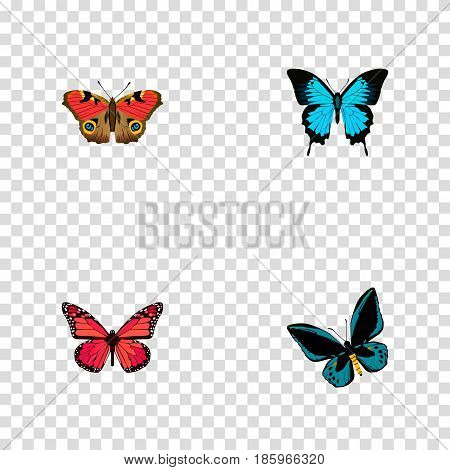 Realistic American Painted Lady, Papilio Ulysses, Demophoon And Other Vector Elements. Set Of Butterfly Realistic Symbols Also Includes Butterfly, Pink, Bluewing Objects.