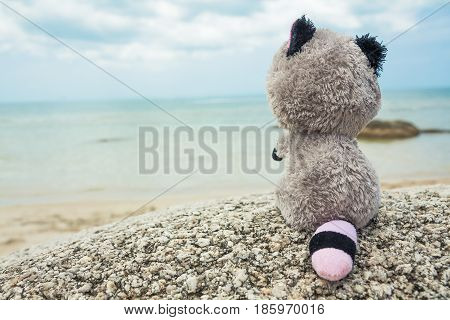 Lonely missing toy looking into the distance on beach during travel