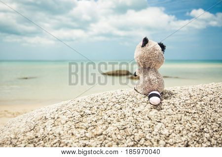 Rear view of missing lonely toy looking into the distance on tropical beach during travel