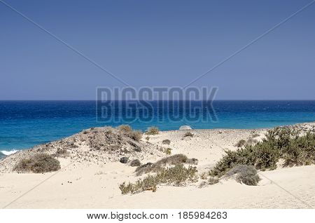Sand Dune And Beach In The Natural-park, Corralejo , Fuerteventura, Canary Islands, Spain