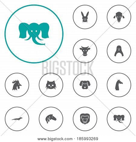 Set Of 12 Beast Icons Set.Collection Of Gecko, Wildcat, Diver And Other Elements.