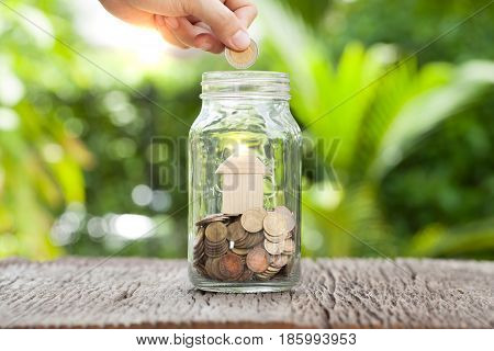 women hand putting money coin in gless Saving money concept concept of financial savings to buy a housetrees growing in a sequence of germination on piles of coins Growth business money.