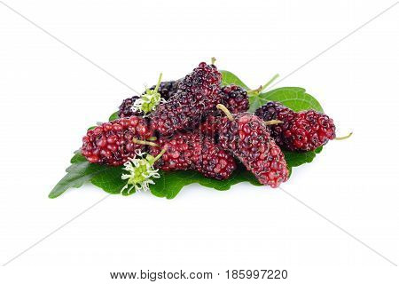 ripe mulberry fruit with leaf on white background