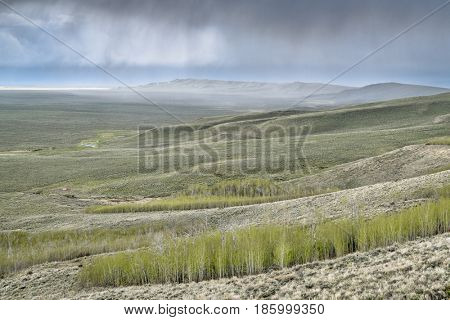 rain and storm clouds over North Park in Colorado with aspen groves, spring scenery with fresh green leaves