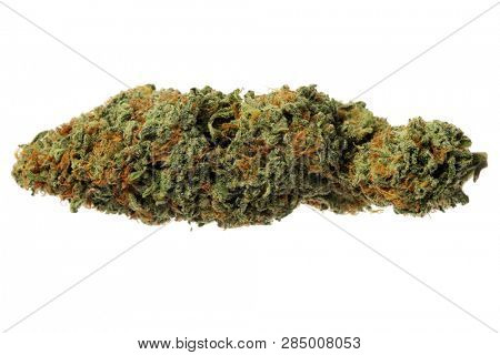 Marijuana. Close up of Cannabis Sativa. Prescription Medical and Recreational Dried Marijuana Flower Bud. isolated on white. Room for your text.