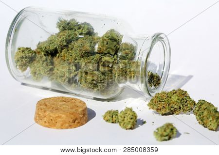Marijuana. Glass Jar filled with Marijuana Buds. Cannibals Sativa buds in a glass stash jar. Isolated on white. Room for text. Medical Marijuana. Recreational Marijuana.