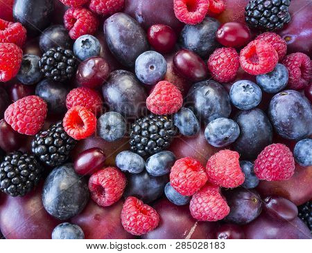 Background Of Fresh Fruits And Berries. Ripe Blackberries, Blueberries, Plums, Red Berries, Raspberr