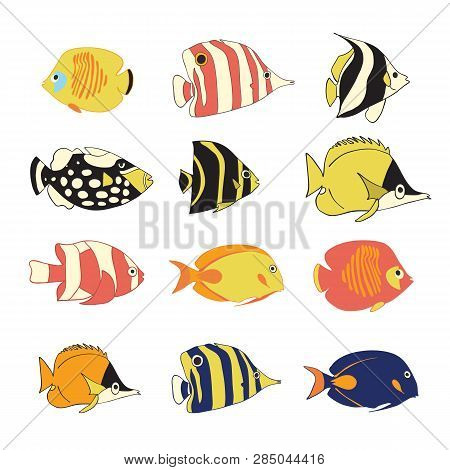 Vector Icon Set Tropical Reef Fishes. Vector Isolated Exotic Fish Characters. Colorful Butterflyfish
