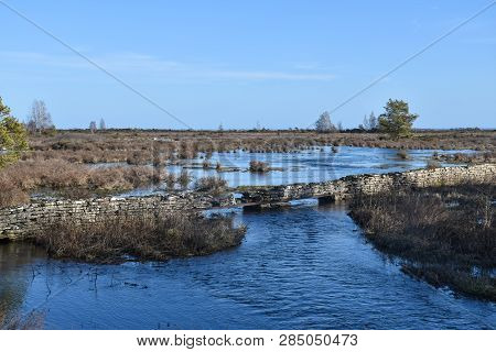 Flooded Creek By Springtime In A Great Plain Landscape At The Swedish Island Oland