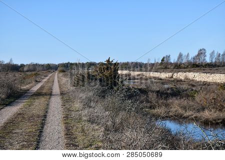 Beautiful Country Road By Spring Season At The Swedish Island Oland
