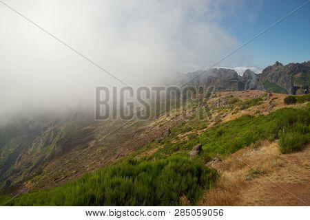 Green Plants On The Mountain Peak Of Pico Do Arieiro On Portuguese Island Of Madeira