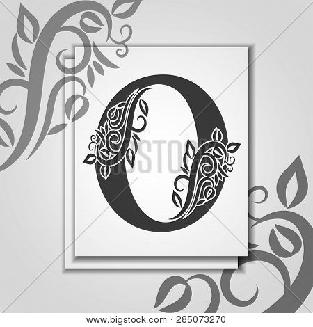 Premium Letter O With Elegant Floral Contour For Initials Logo. Letter O Isolated On Modern Card. Un