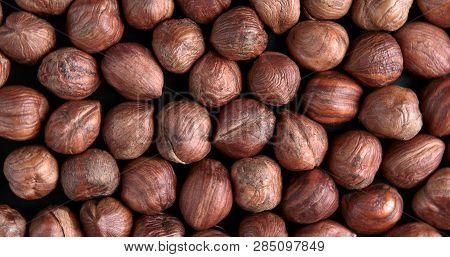 Hazelnut Background. Heap Of Peeled Hazelnuts. Top View