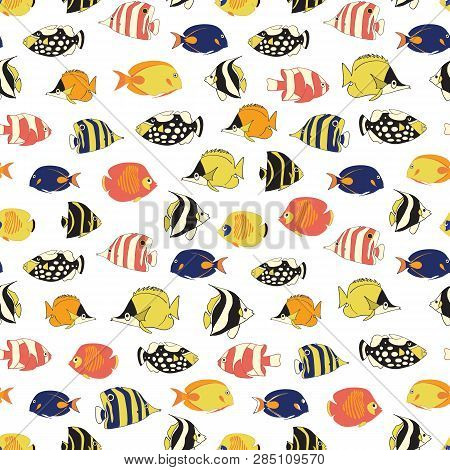 Exotic Reef Fish Seamless Vector Pattern. Tropical Colorful Fishes White Background. Butterflyfish,