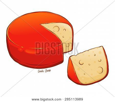 Whole Round Gouda Cheese Sliced Hand Drawn Vector Illustration, Isolated On White Background