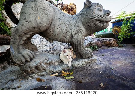 Cat Lies Under A Statue In Buddhist Temple In Bangkok, Thailand, Traveling To Southeast Asia