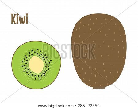 Green Fresh Kiwi Fruit Whole And A Slice. Raw Food Vector Illustration.