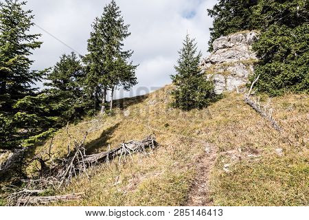 Hikig Trail On Steep Mountain Meadow With Trees, Limestone Rocks And Blue Sky Bellow Predna Poludnic