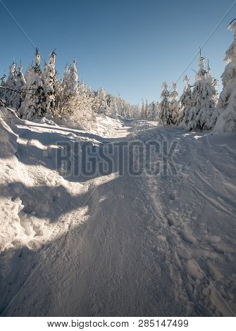Snow Covered Hiking Trail With Frozen Small Trees Around And Clear Sky Bellow Lysa Hora Hill In Wint
