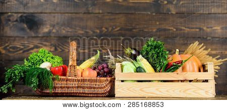 Grocery Shop Concept. Delivery Service Fresh Vegetables From Farm. Buy Fresh Homegrown Vegetables. J