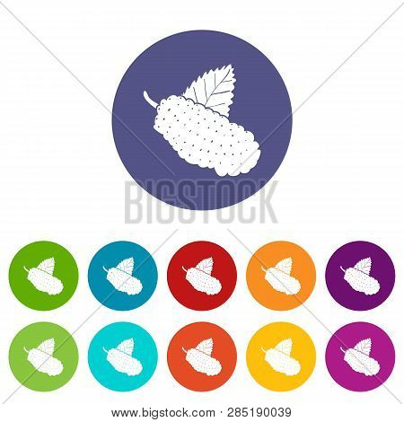 Mulberry Icons Color Set Vector For Any Web Design On White Background