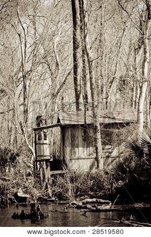 Old shack in a Bayou in New Orleans