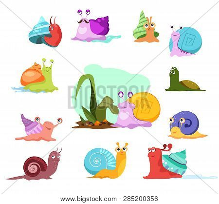 Multi-colored Snails Set. Cartoon Mollusca Collection. Can Be Used For Topics Like Invertebrate, Cre