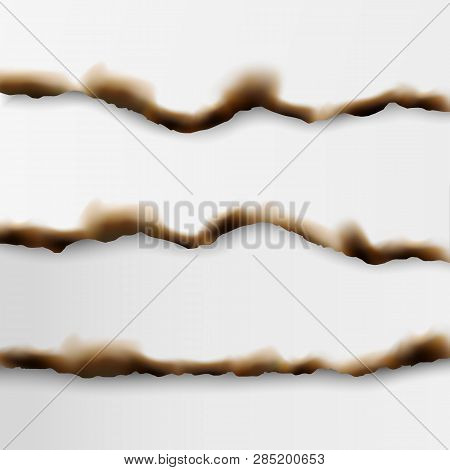 Set Of Vector Realistic Torn And Burnt Paper Edges With Shadows