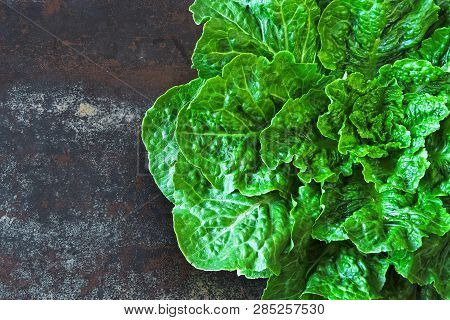 Fresh Green Romaine Lettuce. Romain Lettuce Bunch On Stylish Shabby Surface. Beautiful Green Bunch O