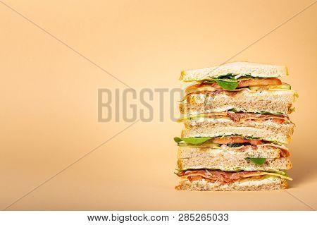Cut Tasty Sandwich Concept