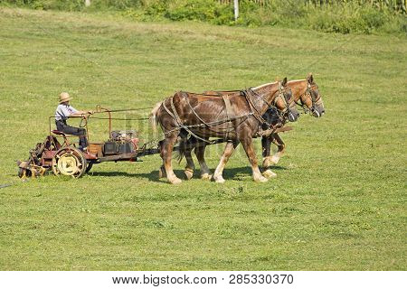An Amish Farmer On A Horse And Buggy Working Farm
